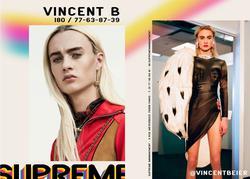 Vincent Beier   90623937