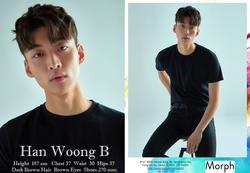 M-HanWoonBi   99265933