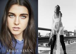 Addie Sines   79143078