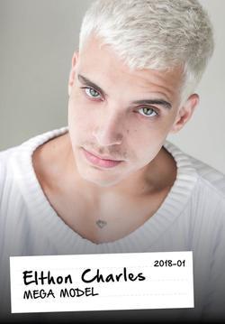 Elthon Charles   13301358