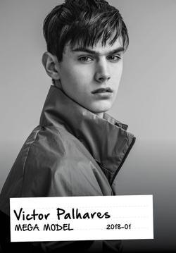 Victor Palhares   55900214
