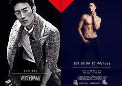 Lin Xie   65154144