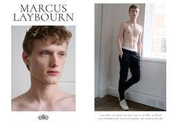 Marcus   42394325