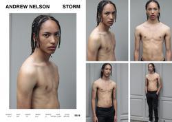 Andrew Nelson   89532471