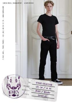 VIDAR ERIKSSON 2   1668463