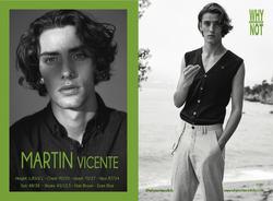 Martin Vicente   63888706