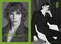 Mateus Galvao   31925681