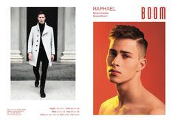 Raphael   52383311