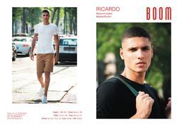 Ricardo   86190606
