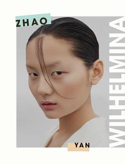 ZHAO YAN   66412780