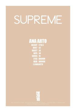 ANA ARTO    19085580