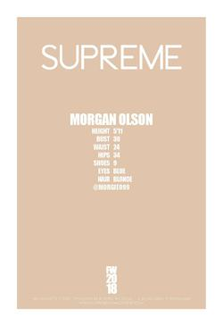 MORGAN OLSON    12936759