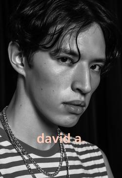David   77800417
