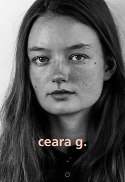 Ceara   99391348
