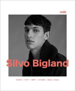 Silvo Bigland   3185719