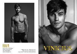 vinicius   79483848
