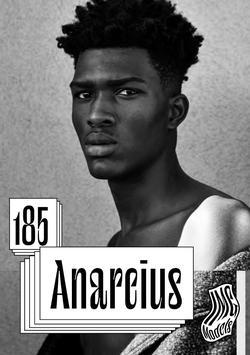 ANARCIUS   43221658
