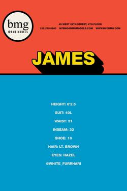 James    33409941