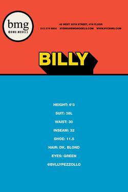 Billy    95397335
