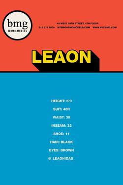 Leaon    96272003