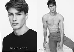 David Vega   88994226