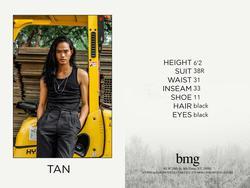 Tan    73368396