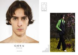 Goya   27423756