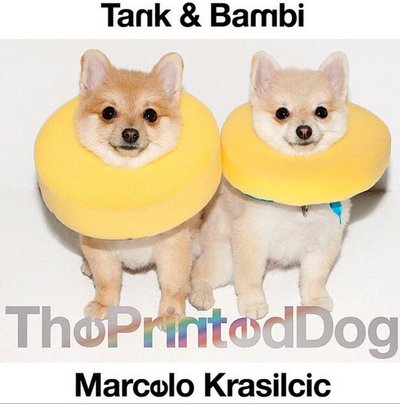 Tank and Bambi Formichetti - Ph: Marcelo Krasilcic for Printed Dog Magazine